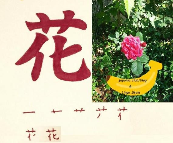 hana blog