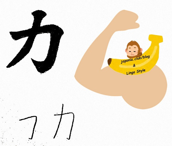 chikara blog