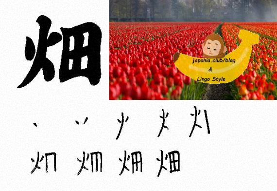 hatake-blog